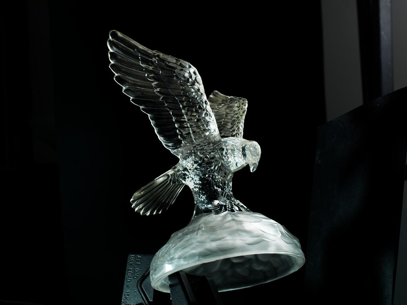 eagle_0011